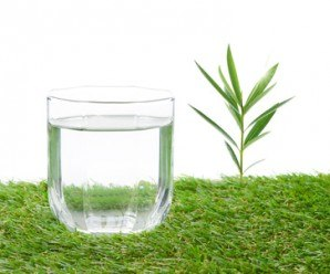 glass of water on a field isolate on white
