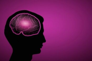 Silhouette of human head with brain on color background